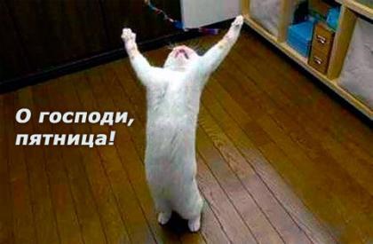 http://www.anekdotov-mnogo.ru/image-prikol/smeshnie_kartinki_1349286824031020121657.jpg