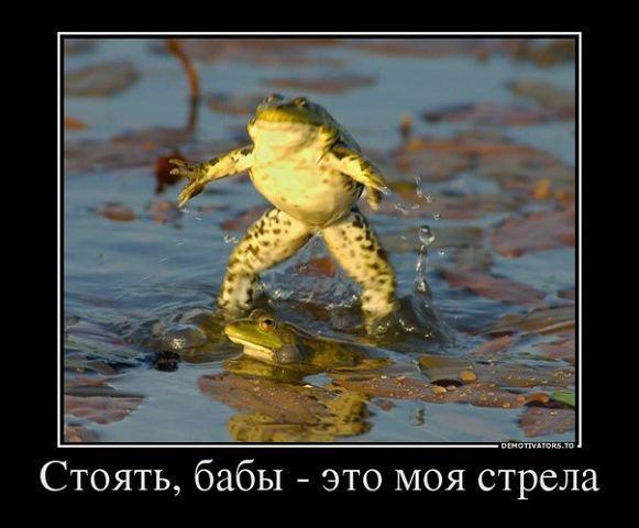 http://www.anekdotov-mnogo.ru/image-prikol/smeshnie_kartinki_1349376210041020121221.jpg
