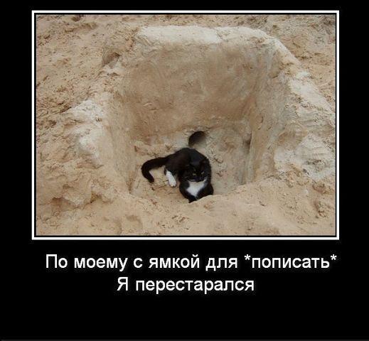 http://www.anekdotov-mnogo.ru/image-prikol/smeshnie_kartinki_134937621004102012428.jpg