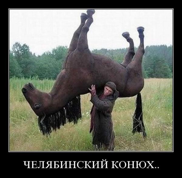 http://www.anekdotov-mnogo.ru/image-prikol/smeshnie_kartinki_1349534783061020121517.jpg