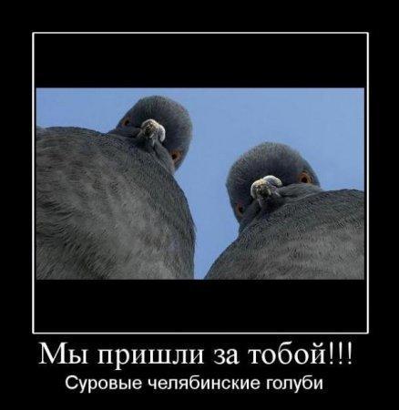 http://www.anekdotov-mnogo.ru/image-prikol/smeshnie_kartinki_1349534783061020122383.jpg
