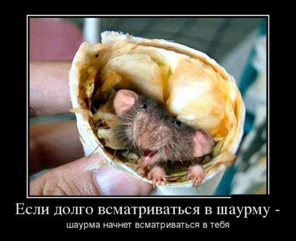 http://www.anekdotov-mnogo.ru/image-prikol/smeshnie_kartinki_135004749912102012163.jpg