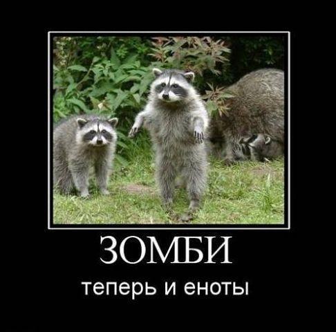 http://www.anekdotov-mnogo.ru/image-prikol/smeshnie_kartinki_135015158013102012243.jpg
