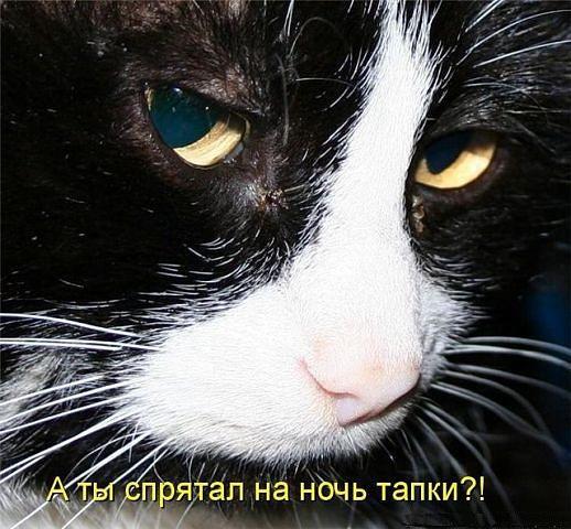 http://www.anekdotov-mnogo.ru/image-prikol/smeshnie_kartinki_1350313307151020121185.jpg