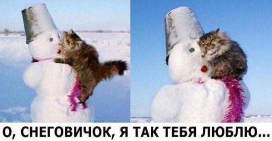 http://www.anekdotov-mnogo.ru/image-prikol/smeshnie_kartinki_1350547403181020122491.jpg