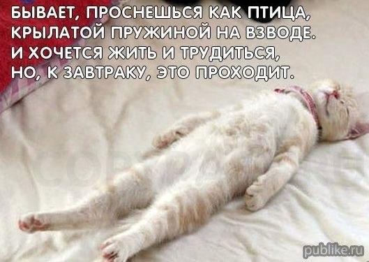 http://www.anekdotov-mnogo.ru/image-prikol/smeshnie_kartinki_135118426125102012697.jpg