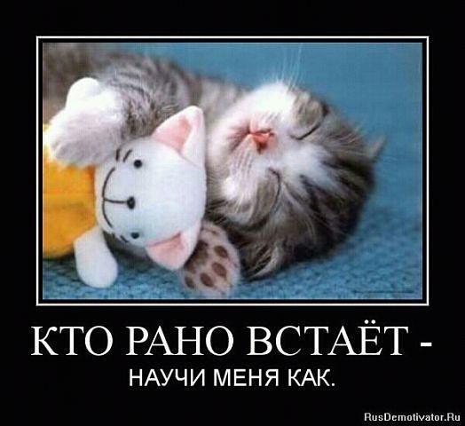 http://www.anekdotov-mnogo.ru/image-prikol/smeshnie_kartinki_1351184361251020122144.jpg