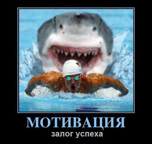 http://www.anekdotov-mnogo.ru/image-prikol/smeshnie_kartinki_135128227527102012143.jpg