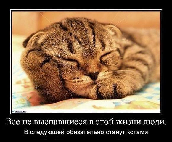 http://www.anekdotov-mnogo.ru/image-prikol/smeshnie_kartinki_1351282275271020122812.jpg