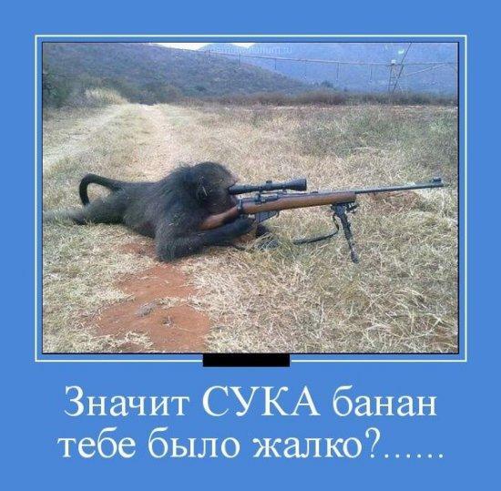 http://www.anekdotov-mnogo.ru/image-prikol/smeshnie_kartinki_1351610611301020121063.jpg