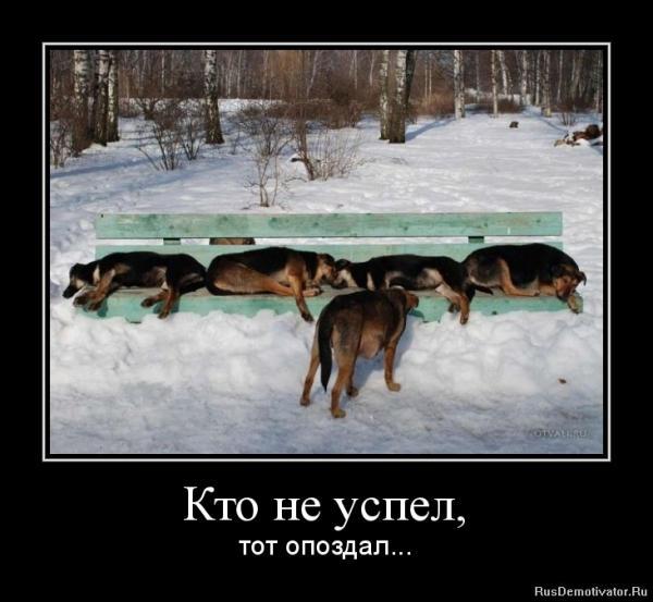 http://www.anekdotov-mnogo.ru/image-prikol/smeshnie_kartinki_135426633230112012424.jpg
