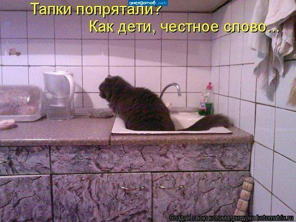 http://www.anekdotov-mnogo.ru/image-prikol/smeshnie_kartinki_1354630286041220122892.jpg