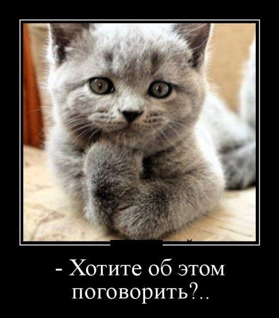 http://www.anekdotov-mnogo.ru/image-prikol/smeshnie_kartinki_1355060134091220122213.jpg