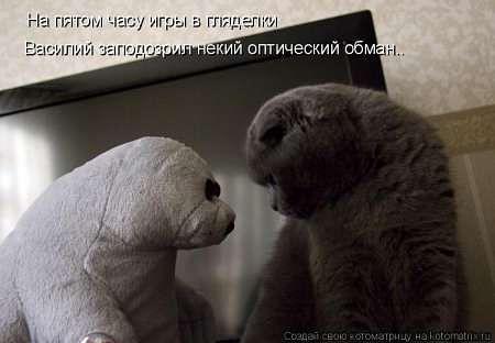 http://www.anekdotov-mnogo.ru/image-prikol/smeshnie_kartinki_1355238292111220122415.jpg