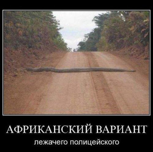 http://www.anekdotov-mnogo.ru/image-prikol/smeshnie_kartinki_135569543617122012519.jpg