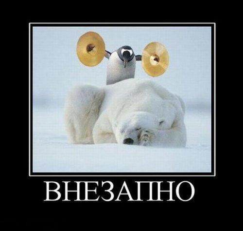 http://www.anekdotov-mnogo.ru/image-prikol/smeshnie_kartinki_135569624017122012967.jpg