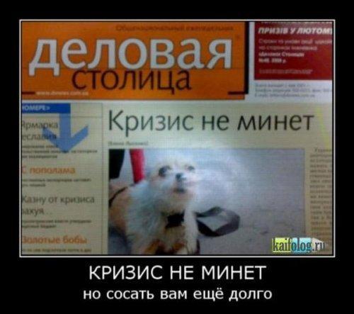 http://www.anekdotov-mnogo.ru/image-prikol/smeshnie_kartinki_135578630018122012723.jpg