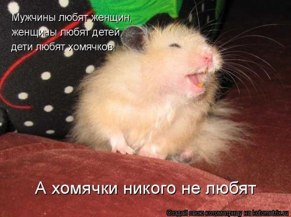 http://www.anekdotov-mnogo.ru/image-prikol/smeshnie_kartinki_1356037939211220122986.jpg