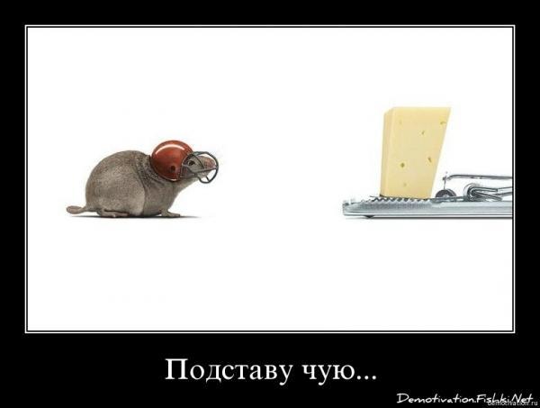 http://www.anekdotov-mnogo.ru/image-prikol/smeshnie_kartinki_1356149460221220122634.jpg