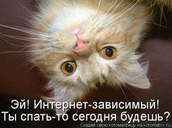 http://www.anekdotov-mnogo.ru/image-prikol/smeshnie_kartinki_135618550522122012879.jpg