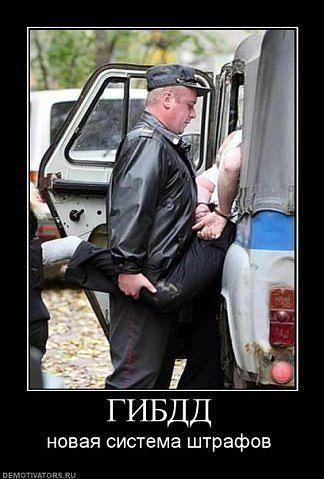 http://www.anekdotov-mnogo.ru/image-prikol/smeshnie_kartinki_1356190279221220121212.jpg