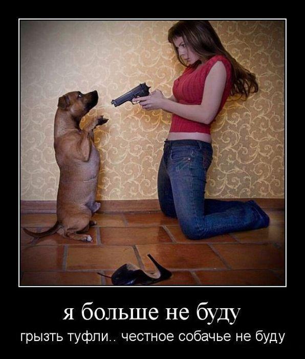 http://www.anekdotov-mnogo.ru/image-prikol/smeshnie_kartinki_135631727724122012887.jpg