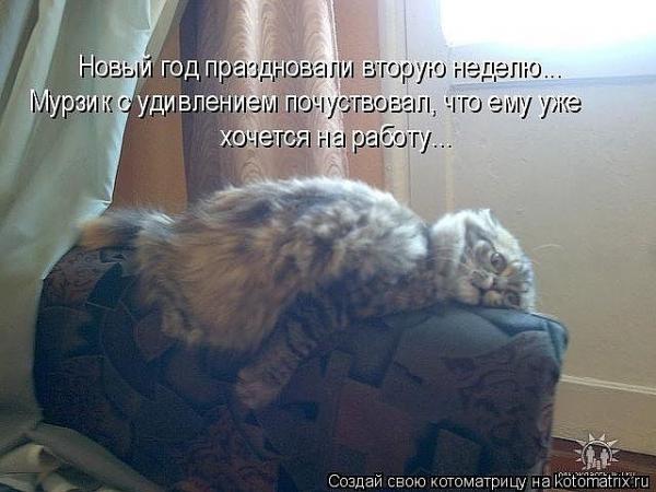 http://www.anekdotov-mnogo.ru/image-prikol/smeshnie_kartinki_1356432656251220121151.jpg