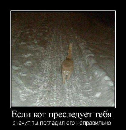 http://www.anekdotov-mnogo.ru/image-prikol/smeshnie_kartinki_1356436367251220122420.jpg