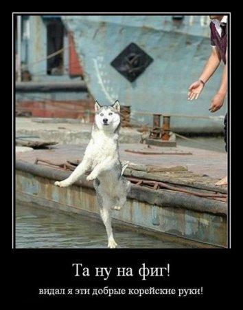 http://www.anekdotov-mnogo.ru/image-prikol/smeshnie_kartinki_1356442267251220121039.jpg