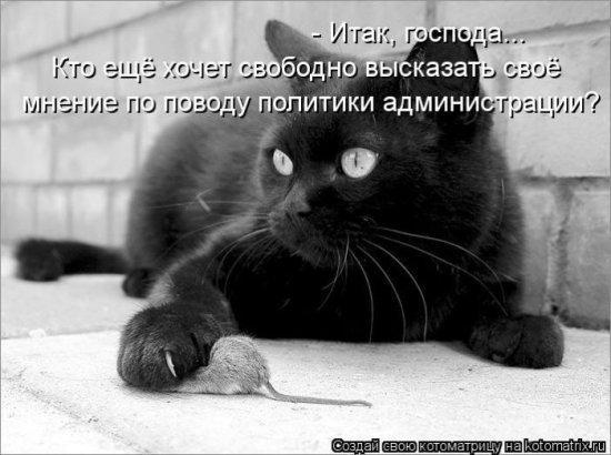 http://www.anekdotov-mnogo.ru/image-prikol/smeshnie_kartinki_1356791381291220121991.jpg