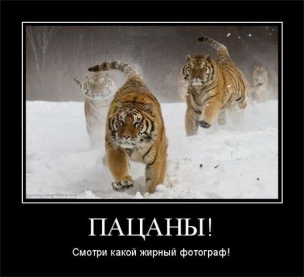 http://www.anekdotov-mnogo.ru/image-prikol/smeshnie_kartinki_1357050558010120131953.jpg