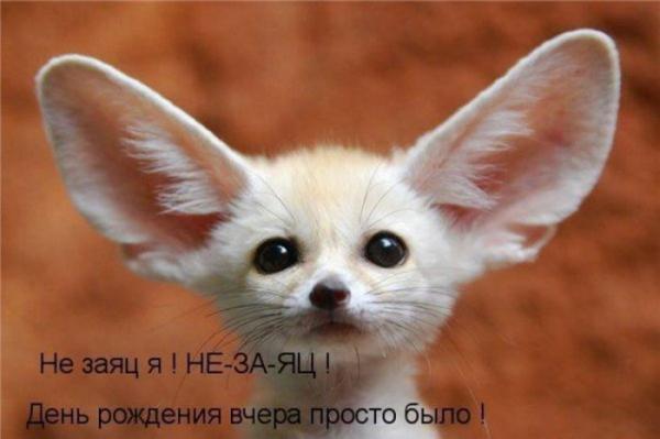 http://www.anekdotov-mnogo.ru/image-prikol/smeshnie_kartinki_1357473496060120131790.jpg