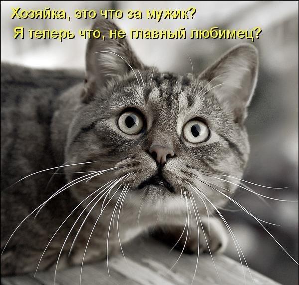 http://www.anekdotov-mnogo.ru/image-prikol/smeshnie_kartinki_1357473496060120132606.jpg