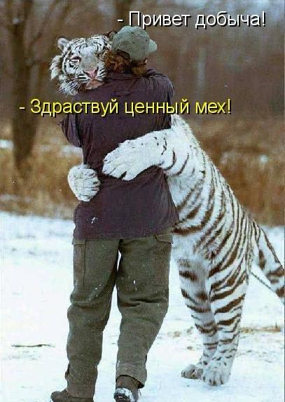 http://www.anekdotov-mnogo.ru/image-prikol/smeshnie_kartinki_135747349606012013428.jpg