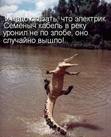 http://www.anekdotov-mnogo.ru/image-prikol/smeshnie_kartinki_135747378606012013342.jpg