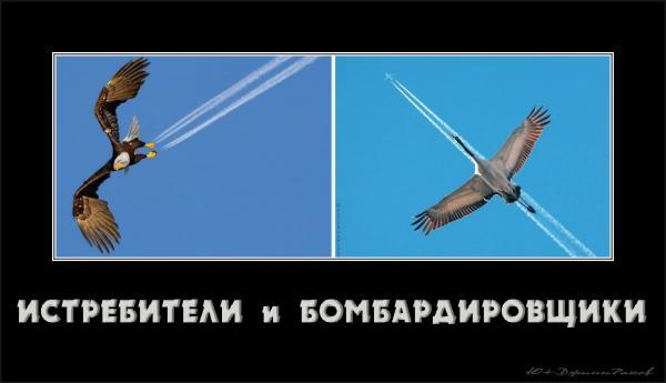 http://www.anekdotov-mnogo.ru/image-prikol/smeshnie_kartinki_135827994415012013319.jpg