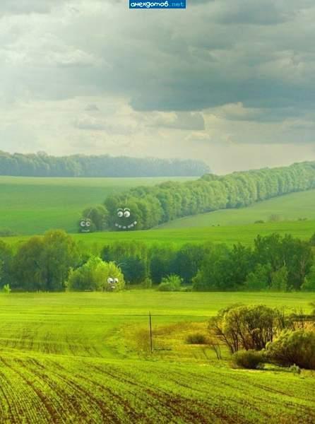 http://www.anekdotov-mnogo.ru/image-prikol/smeshnie_kartinki_135857911419012013360.jpg