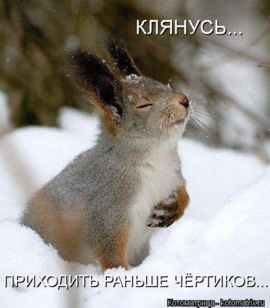 http://www.anekdotov-mnogo.ru/image-prikol/smeshnie_kartinki_1358669535200120132825.jpg