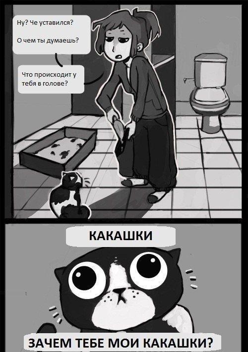 http://www.anekdotov-mnogo.ru/image-prikol/smeshnie_kartinki_1359098085250120132305.jpg