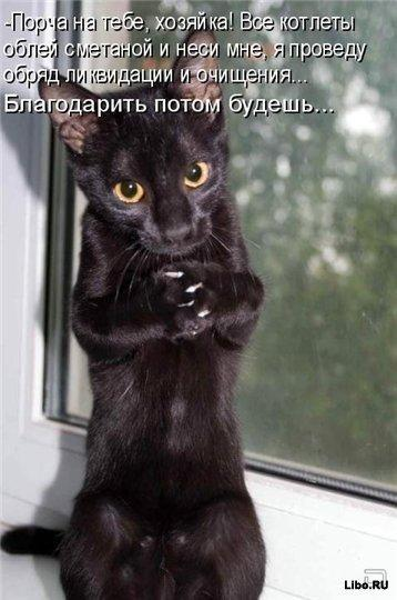 http://www.anekdotov-mnogo.ru/image-prikol/smeshnie_kartinki_1359259756270120132361.jpg