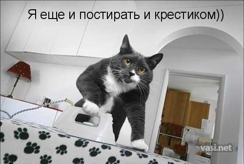 http://www.anekdotov-mnogo.ru/image-prikol/smeshnie_kartinki_135925975727012013467.jpg