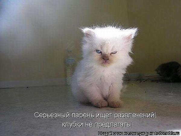 http://www.anekdotov-mnogo.ru/image-prikol/smeshnie_kartinki_1359292825270120132284.jpg