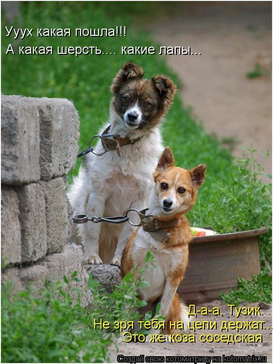 http://www.anekdotov-mnogo.ru/image-prikol/smeshnie_kartinki_1359452800290120131132.jpg