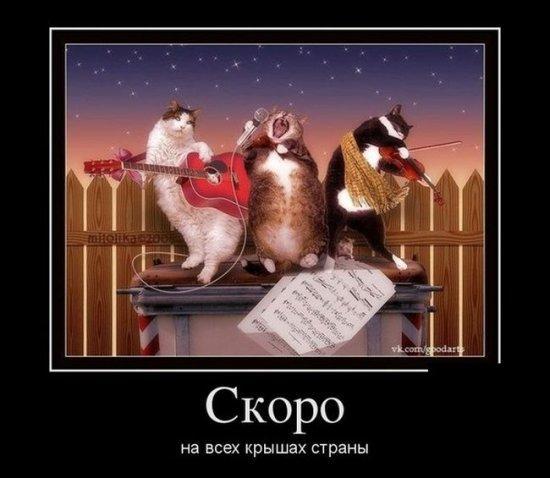 http://www.anekdotov-mnogo.ru/image-prikol/smeshnie_kartinki_1359576044310120132979.jpg