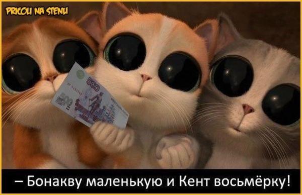 http://www.anekdotov-mnogo.ru/image-prikol/smeshnie_kartinki_1359603143310120132852.jpg