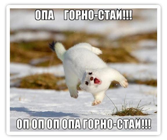 http://www.anekdotov-mnogo.ru/image-prikol/smeshnie_kartinki_1359603414310120131660.jpg
