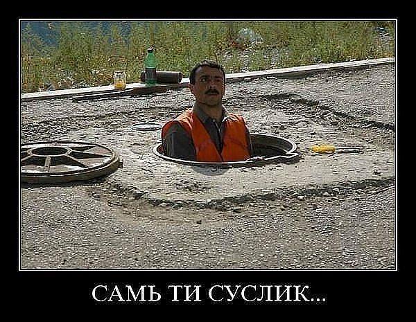 http://www.anekdotov-mnogo.ru/image-prikol/smeshnie_kartinki_135987916703022013937.jpg