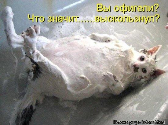 http://www.anekdotov-mnogo.ru/image-prikol/smeshnie_kartinki_136052693311022013301.jpg