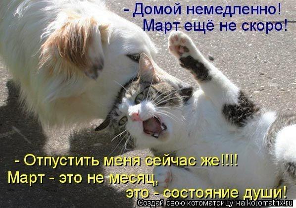 http://www.anekdotov-mnogo.ru/image-prikol/smeshnie_kartinki_136204258128022013409.jpg