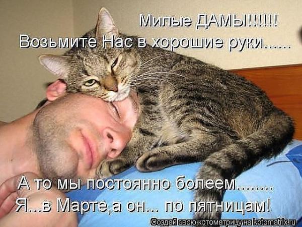 http://www.anekdotov-mnogo.ru/image-prikol/smeshnie_kartinki_1362061199280220131311.jpg
